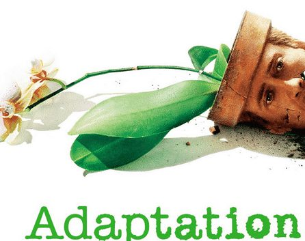 gambar adaptasi fisiologi