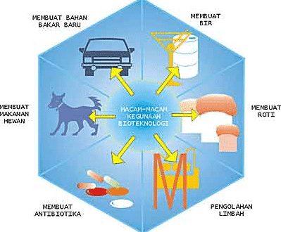 gambar bioteknologi