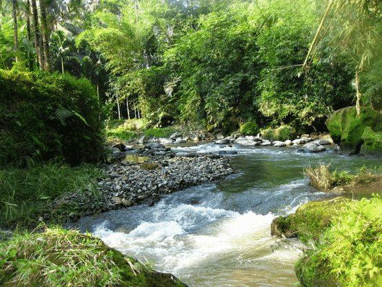 gambar jenis-jenis sungai