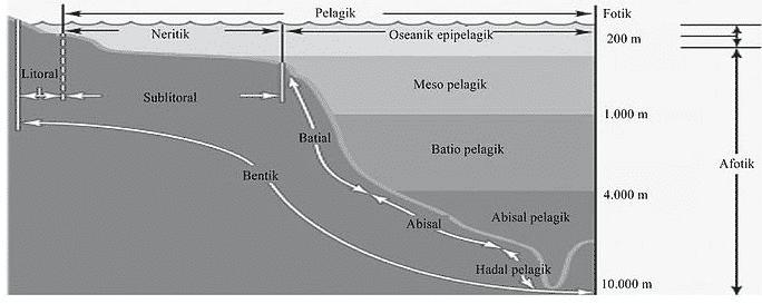 gambar pembagian zona laut