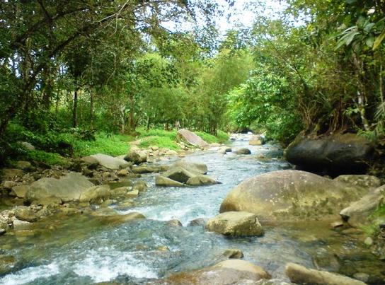 Pengertian Sungai & Jenis-Jenis Serta Manfaat Hingga ...