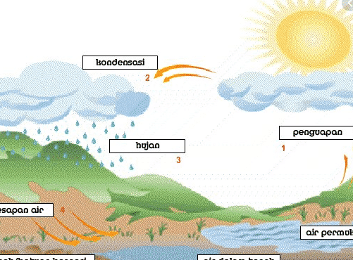Jenis Siklus Air