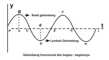 Panjang Gelombang Transversal