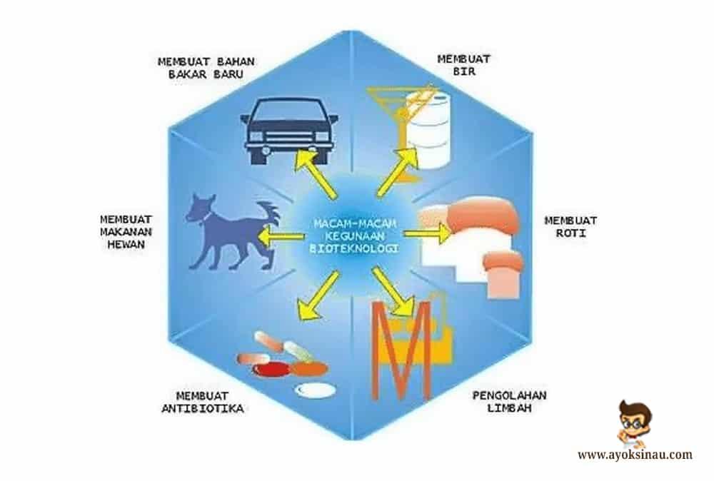 manfaat-bioteknologi