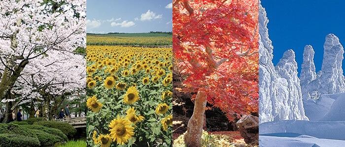 Iklim Negara Jepang
