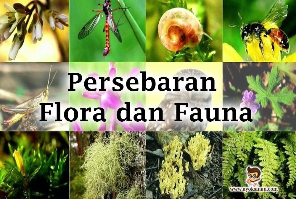 persebaran-flora-dan-fauna