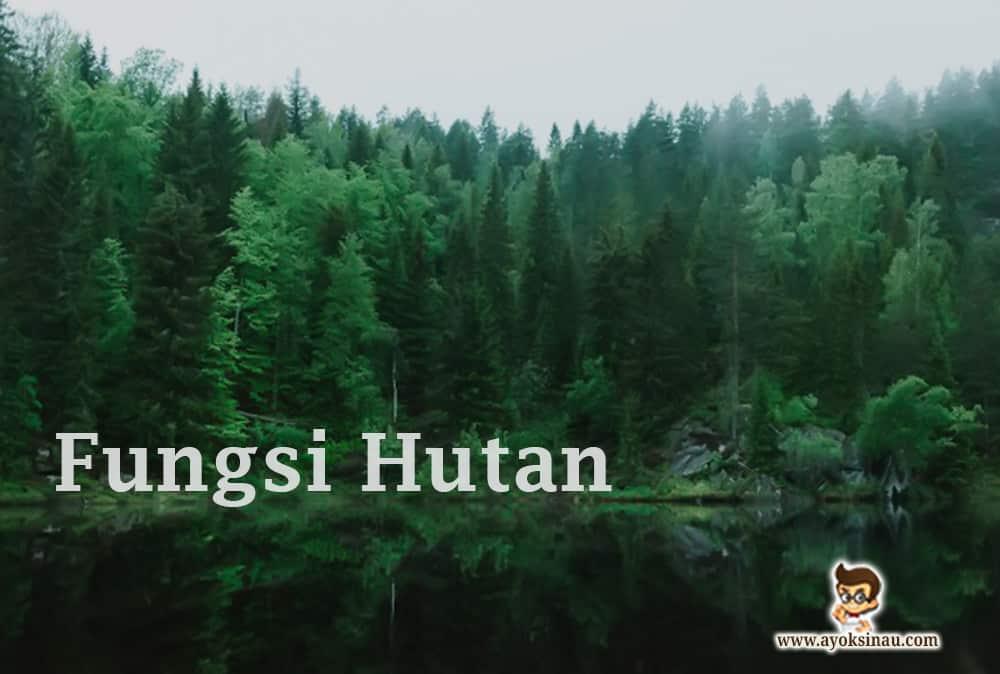 fungsi-hutan